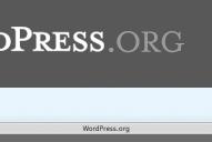 Zaun : Être avertis des mises à jour de WordPress et de ses plugins.