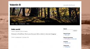 Nouveau thème - Les nouveautés de WordPress 3.0 !