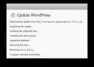 Se débarrasser des plugins par défaut à chaque mise à jour WordPress