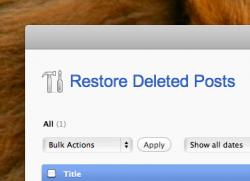WordPress Undelete pour restaurer vos articles effacés par erreur