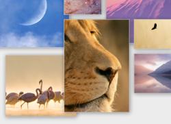 Modifier le système d'envoi d'images et redimensionnez-les à la volée