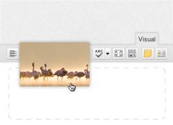 Ajouter des images dans vos contenus en Drap & Drop