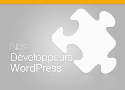 Nos développeurs WordPress #1 – Jonathan Buttigieg
